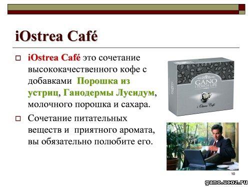 Gano eWorldwide. Кофе для любви, Ганодерма Лусидум, устрицы. Незаменимое средство для гипотоника