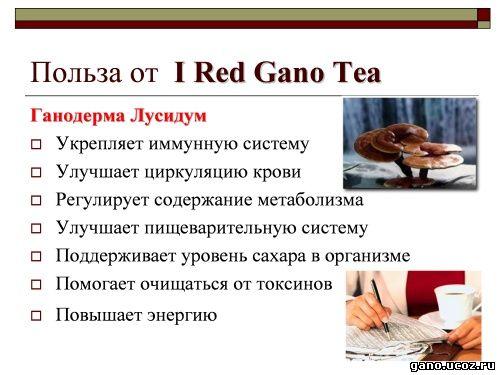 гано результаты применения продукции ай ред gano чай
