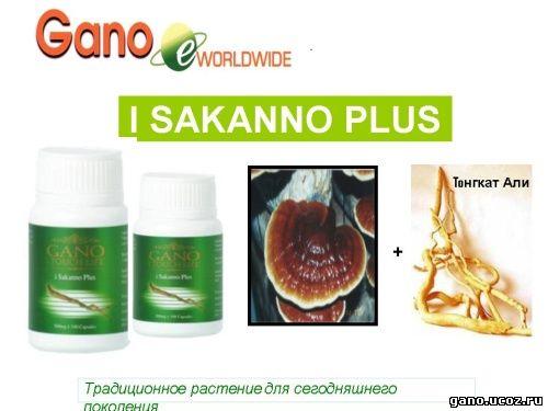Gano eWorldwide iSakanno Плюс омоложение организма, восполнение сил и энергии