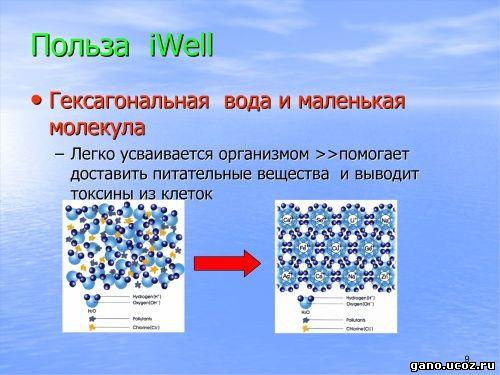 Gano eWorldwide iwell правильное использование